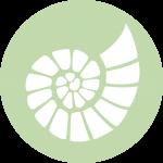 SYNDROMI-neon